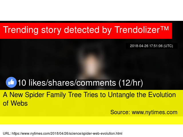 A New Spider Family Tree Tries to Untangle the Evolution of Webs